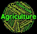 Link to agriculture