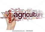 Link to agricultura
